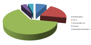Statistik Einsätze 2013